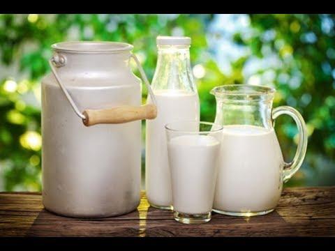 Xxx Mp4 Everything About Milk 3gp Sex