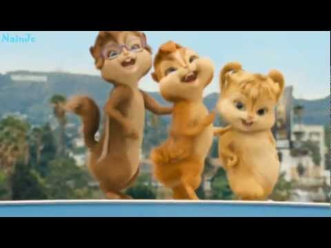 Talking tom cat Happy Birthday to You!!! chipmunks - YouTube video xxx