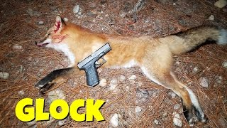 Predator Hunting With Glock 19! 9mm Predator Hunting!