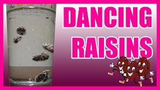 Dancing Raisins EASY KIDS SCIENCE