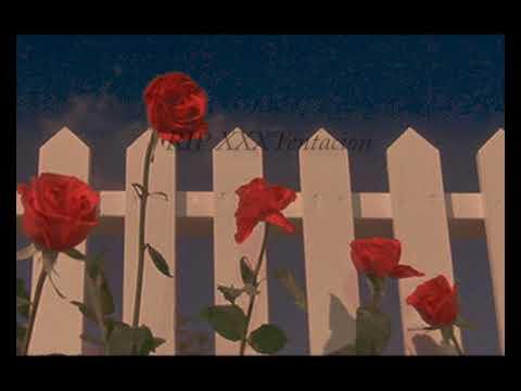 Xxx Mp4 XXXTentacion Tribute Rest In Peace Xxxtentacion Tribute Video Prod By MAISONMADE 3gp Sex
