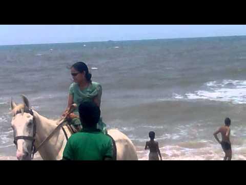 marina beach horse on sexy girl