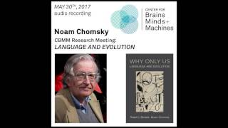 Noam Chomsky: Language and Evolution