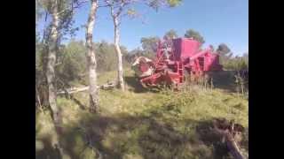 Norwegian Crash with harvester