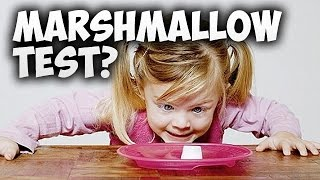 How the Marshmallow Test will predict if you WIN or LOSE - Instant Gratification | Marc Dressen