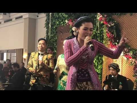 Vicky Shu 'Goyang' Resepsi Bobby-Kahiyang