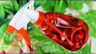 প্লাস্টিকের বোতল দিয়ে ৩টি সুন্দর জিনিস বানানো শিখুন | 3 Amazing Plastic Bottles Life Hacks  Bangla