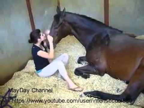 Xxx Mp4 Funny Video 2016 Girl And Horse Great Bond MayDay Channel New 3gp Sex