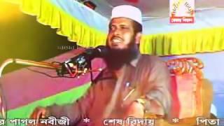 Bangla Waz Tofazzul Hussain About Prayer Namaz