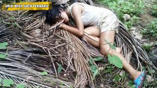 'HEBOH' viral Gadis Ini Tak Tahan Lagi  Lakukan 'GITUAN' Dengan Pohon Kelapa