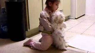 2 year old Torturing Puppy So Funny!!!