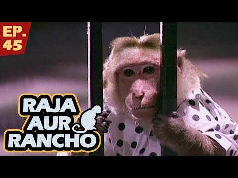 Xxx Mp4 राजा और रैंचो Episode 45 Raja Aur Rancho 90s Best TV Shows 24th May 2017 3gp Sex