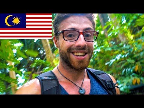 JUNGLE HIKING 🌿 TIOMAN ISLAND MALAYSIA