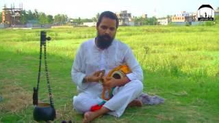 বিনোদিনী গো তোর বৃন্দাবন কারে দিয়ে যাবি subash khapa -  baulbare.com