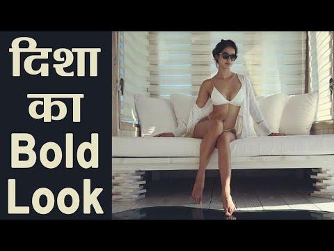 Xxx Mp4 Disha Patani Raises The Temperature In A White Bikini Boldsky 3gp Sex