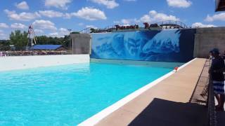 Wave pool at Wisconsin dells