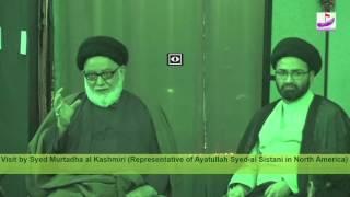 Q&A by Syed Murtadha al-Kashmiri(Representative of Ayatullah as-Sistani in North America)