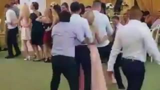 Very Funny Penguin Dance