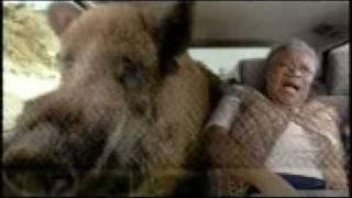 Superbowl 2009 - Pedigree Commercial