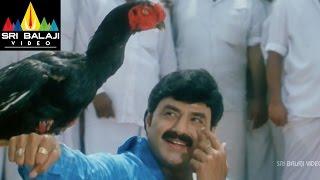Palanati Brahmanaidu Movie Chittimallu Fight   Bala Krishna, Sonali Bendre   Sri Balaji Video