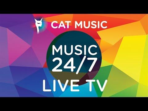 Cat Music Live TV / Non Stop Music 24/7 🎧