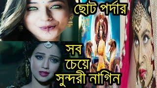ছোট পর্দার মোহময়ী 'নাগিন' কারা?তাদের আসল নাম|Star plus|hindi serial|Naagin||Priyal Gor|Mouni Roy