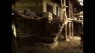 گالش - پيرمردي كه 61 سال است در دل جنگلهاي مازندران زندگي ميكند - حميد شعباني
