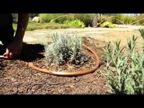 How to Video Converting Sprinklers to Drip