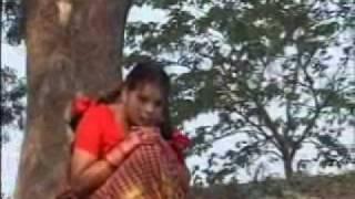 Shamer bashi - Kaya