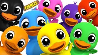 Learn Colors With Ducks   Learning colors song for Kids by Farmees