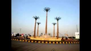 Bandari Shad (milad)