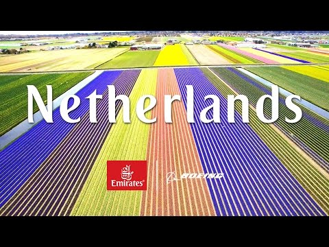 View from Above- Netherlands