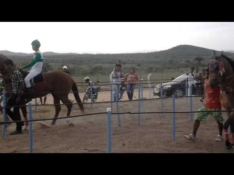 Corrida de Cavalo Ponto Novo BA