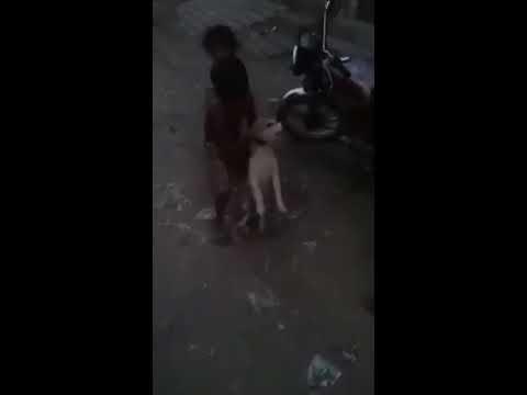 Xxx Mp4 Dog And Girl Love 3gp Sex