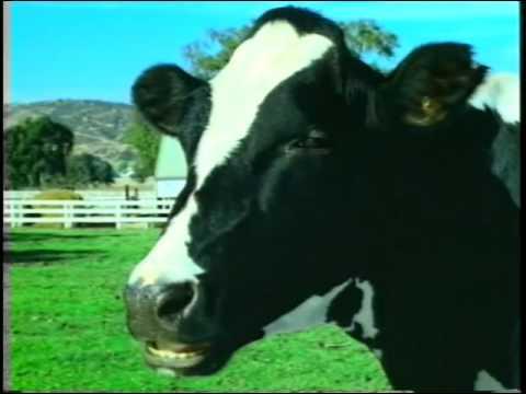 Xxx Mp4 XXX Fisting A Cow Microsoft Commercial Feat Emmett James 3gp Sex