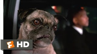 Men in Black II - Frank Will Survive Scene (2/10) | Movieclips