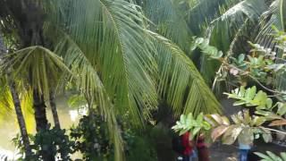 wokil bari (advocate house) Nababgang , dhohar, Bangladesh