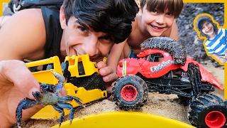 Monster Trucks and Construction Trucks SEA CREATURE Adventure!