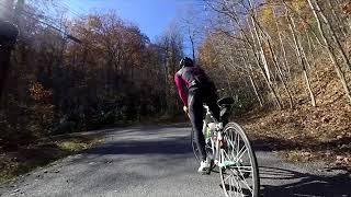 Bear Rock Rd Climb