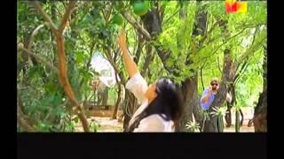 Muhabbat Subh Ka Sitara Hai- NabeelRomaisaVM - Dil Ki Lagi