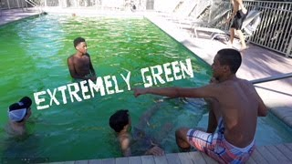 THE POOL WAS GREEN!