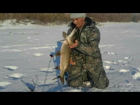 рыбалка на ишиме весной