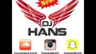 Haa || Zora Randhawa || Mofolactic Dj Hans || Remix Song