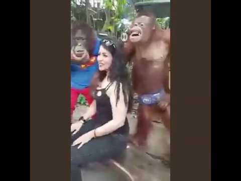 monkey and hot girl||funny whatsapp video