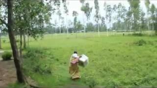 গাইবান্ধায় ভোটের বাক্স নিয়ে পালালেন বৃদ্ধা