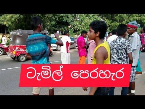 Sri-Lanka Tamil - Perahera in Anuradhapura