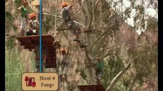 Bosque Aereo Euca