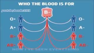 تعرف على فصائل الدم وكل فصيله تاخذ وتعطي من وكيف تعثر على متبرع