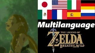 Despair Multilanguage | Memory 16 | Zelda Breath of the Wild