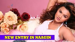 Aashka Goradia to enter the finale episode of Naagin | Colors TV Serial News 2016